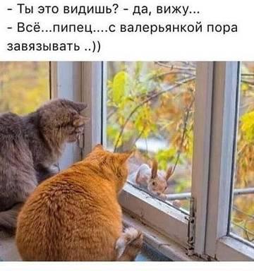 http://s8.uplds.ru/t/g4Tdf.jpg