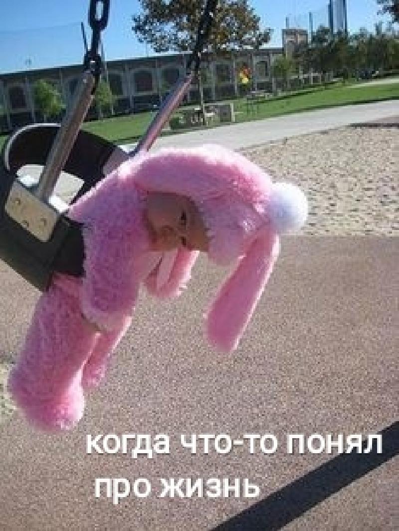 http://s8.uplds.ru/vPZbl.jpg